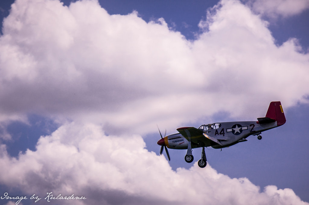 Red-Tail-Squadron-over-Owosso-Train-Planes-and-Automobile-Expo-22th-June-2014-2.jpg